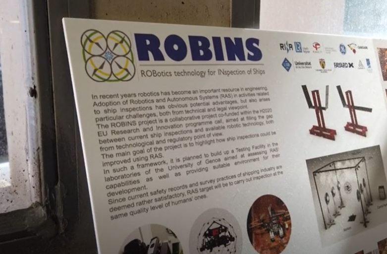 Robins video
